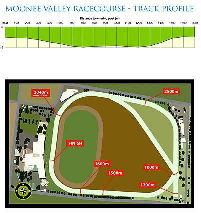 ムーニーヴァレー競馬場コース図