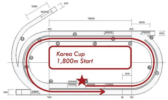 course cup color.jpg