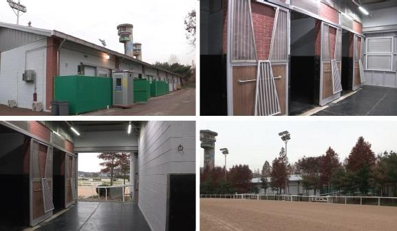 seoul racecourse 3 color.jpg