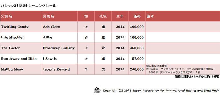 2016年輸入馬名簿22